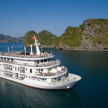 Paradise Puts Fashion First with Upcoming Cruise